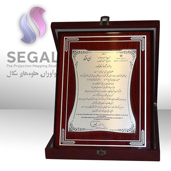 The Award of Innovation in digital art of Digital Media Festival